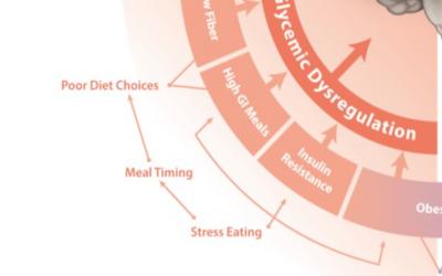 Blog 95.3 Stress and GI Tract (Glycemic Dysregulation)