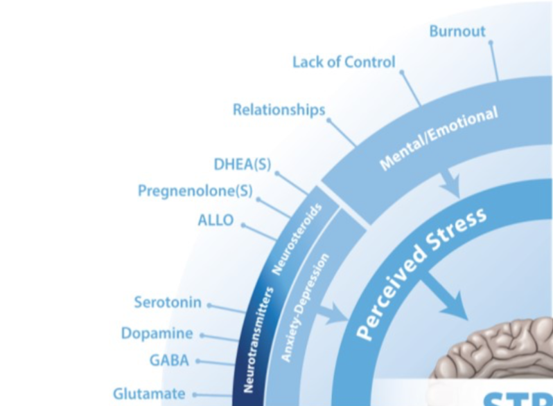 Blog 95.2 Stress and GI Tract (Perceived Stress)