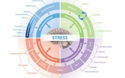 Blog 96 To Summarise Stress and GI Health